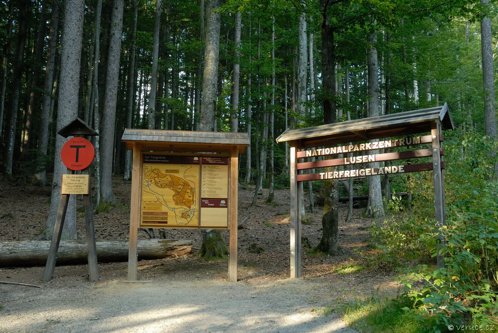 Bavorský les - zoo