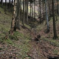 Beskydy - cestou z Malé Stolové