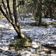 Beskydy - Cestou na Čertův mlýn