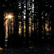 brdy-podzim_13