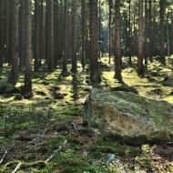 brdy-kloboucek-tok-houpak_37