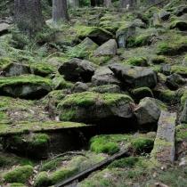 Zřícenina hradu Choustník - blízké skalní město