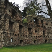 Zřícenna hradu Dalečín (Tolenstein)