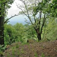 hrebeny-oppidum-hradec_03