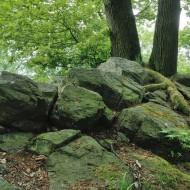 hrebeny-oppidum-hradec_07