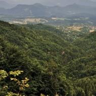 Kremnické vrchy - Nedaleko Velestúru