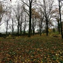 Starý bohnický hřbitov
