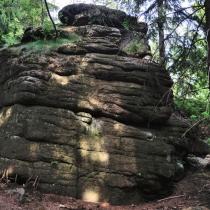 Trniště a Harcovský les (Jizerské hory)