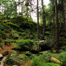Žďárské vrchy - Rybenské Perníčky