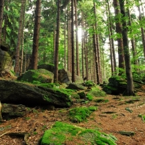 Žďárské vrchy  - Zkamenělý Zámek