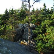 Žďárské vrchy - Čtyří palice