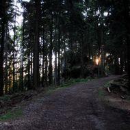 Žďárské vrchy - Ze Čtyř palic do Svratky