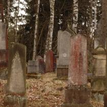 2010-04_drevikov_03
