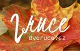 Dveruce.cz - aktivity pro děti, nápady pro rodiče