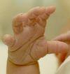 Novorozená ručička